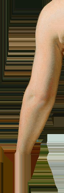 Udklip af venstre arm